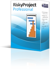 RiskyProject Professional 6.0