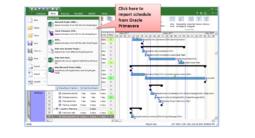 RiskyProject v7.1 - Import Primavera Schedules
